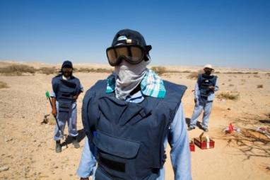 Landmine Search